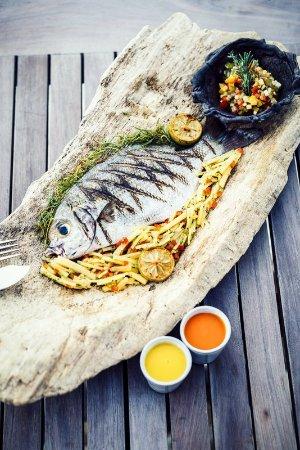 Quirimbas Archipelago, Mozambique: Food - Fresh Fish