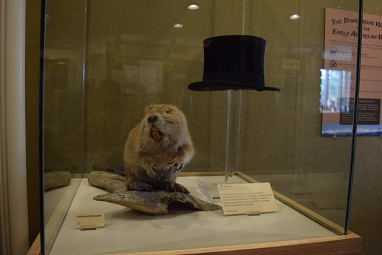 Museum of the Mountain Man: The beaver hats