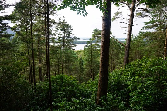 Sneem, Ireland: View from a short hike in Kerry National Park