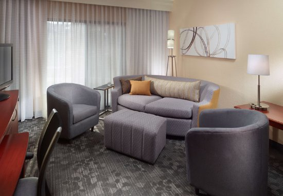 Duluth, Τζόρτζια: Suite Living Area