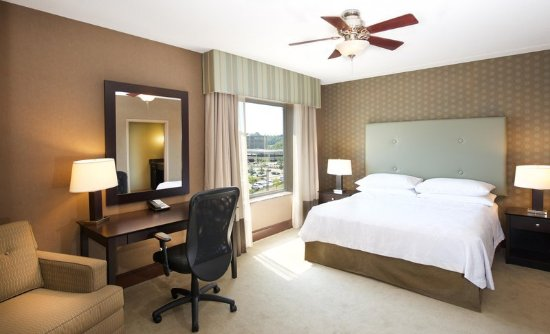 Canonsburg, PA: King Guest Room