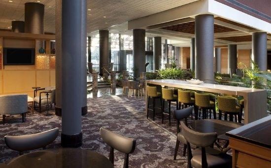 Dunwoody, GA: Lobby Lounge