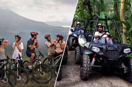 Mountain Cyling and Jungle Buggies in