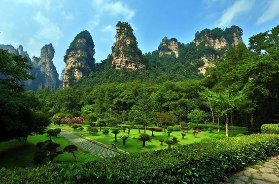 Full Day Zhangjiajie National Forest...