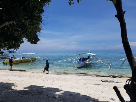 Balicasag Island Tour: 1504053268118_large.jpg