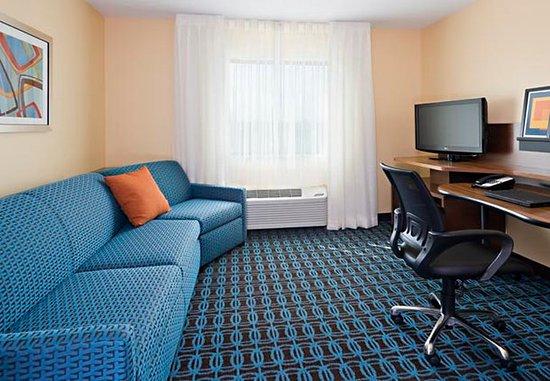 Νάπερβιλ, Ιλινόις: Executive King Suite Living Area