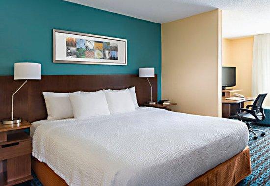 Νάπερβιλ, Ιλινόις: Executive King Suite Sleeping Area
