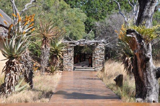 Kapama River Lodge : caminhos no hotel