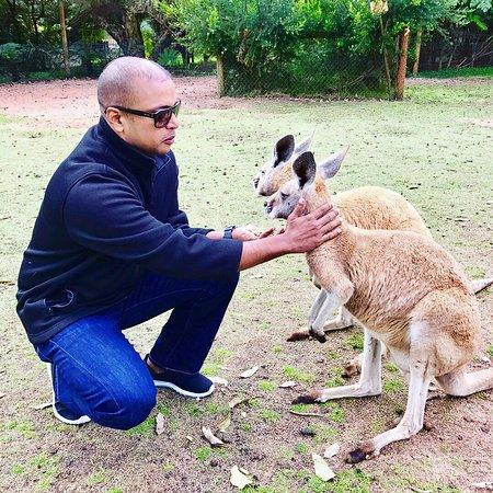 Whiteman, Australië: photo0.jpg