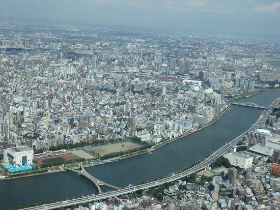 도쿄 스카이 트리 사진
