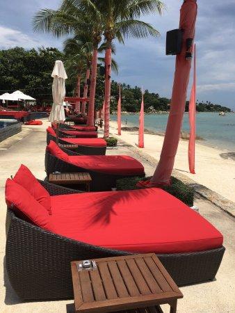 Beach Republic: photo4.jpg