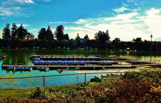 Fairview, OR: paddle boats at the dock
