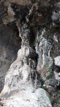 Cave of El Castillo : Cuevas del Monte del Castillo