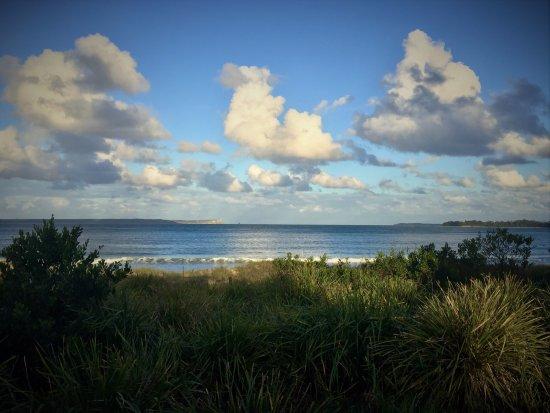 Collingwood beach - Huskisson/Vincentia