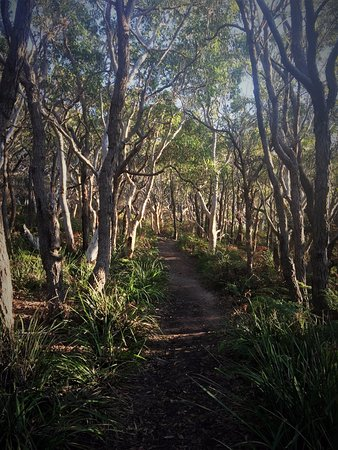 Huskisson, Avustralya: Whitesands Walk