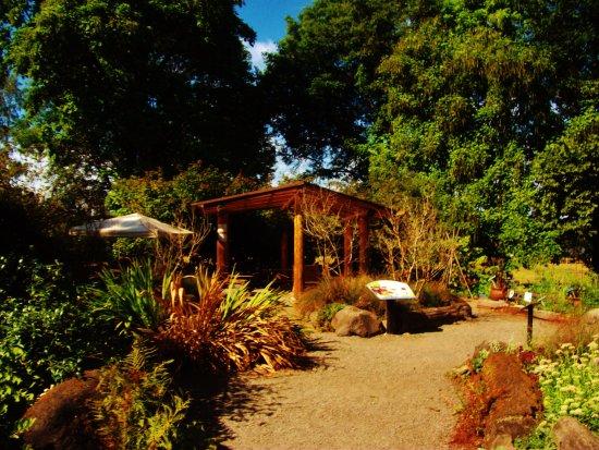 Fairview, OR: a garden area