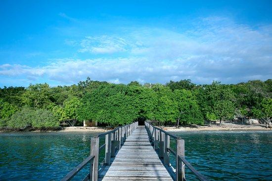 West Bali National Park Photo