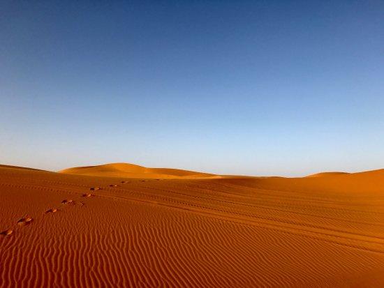 Merzouga Desierto: photo6.jpg