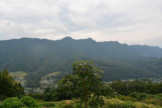 Ikusaka Takatsuya Forest Park