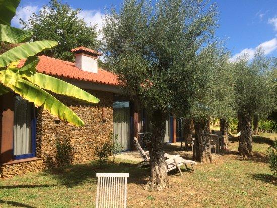 Cabeceiras de Basto, Portugal: Casa de Oliveira