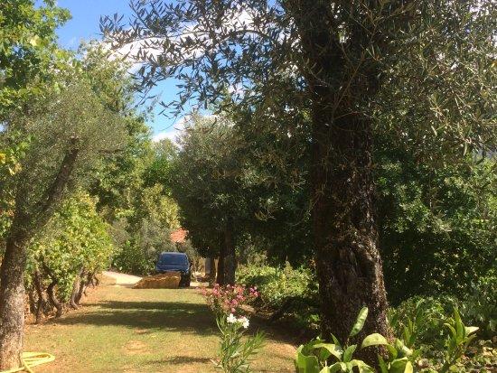 Cabeceiras de Basto, Portugal: tuin bij casa de Oliveira
