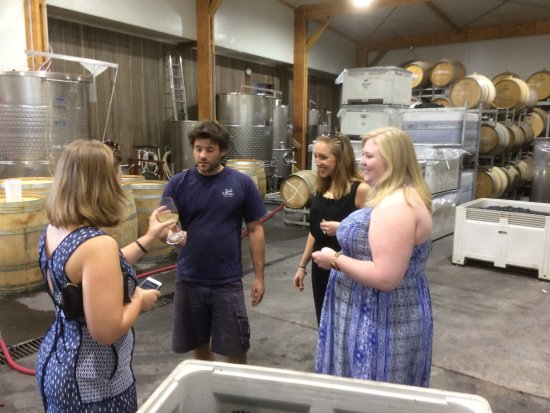 Yarra Valley, Australia: Tasting the grapes in the cellar with Dylan the winemaker at Seville Estate.
