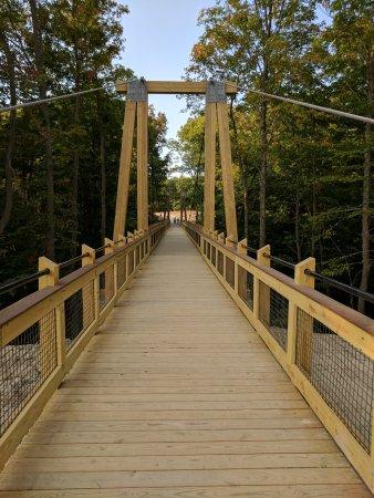 Jenison, Мичиган: Supension bridge