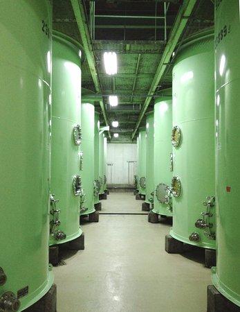 Kainan, Japan: 42基のタンクが並ぶ梅酒蔵。タンクの小窓からは、漬込んだ梅の実を覗くことができます。