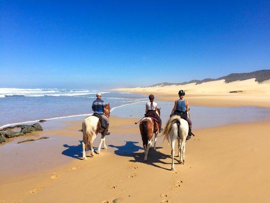 Kenton-on-Sea, Sydafrika: endless beaches