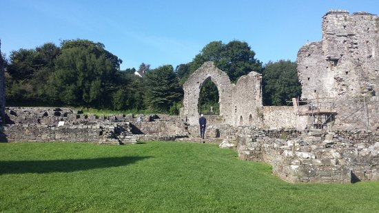 St. Dogmaels Abbey