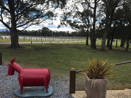 Launceston, Australien: photo4.jpg