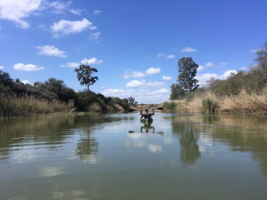 Addo Elephant National Park, แอฟริกาใต้: River Canoeing- perfect for spotting birds, lizards, learning about the local plants