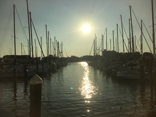 Sea Hag's Bar and Grill: Our dining view