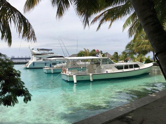 Kurumba Maldives: photo1.jpg