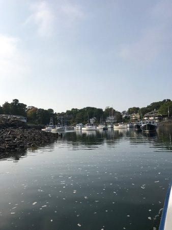 Perkins Cove: photo3.jpg