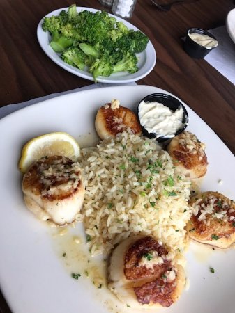 Monroe, MI: Canadian Sea Scallops, choose any 2 sides (I chose rice and broccoli) -Cooked to perfection; del