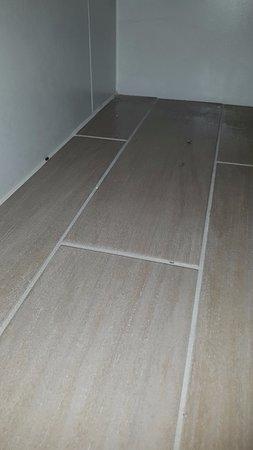 Orsett Hall: wood lice and dead flies in bathroom