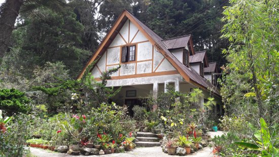 Tanah Rata, Malaysia: Tan's Camellia Garden - Mrs. Tan's House