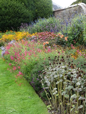 Wimborne Minster, UK: One of the beautifully kept gardens