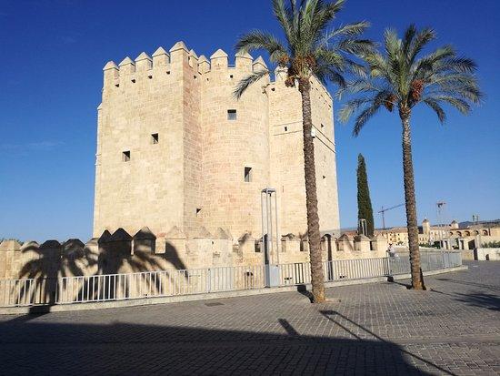 Torre de la Calahorra: Vista de la Torre
