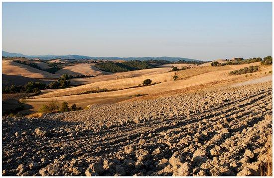 Asciano, Italy: panorama