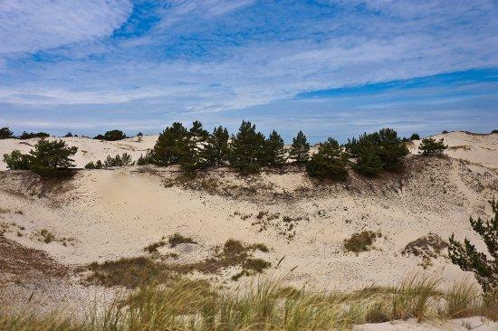 Czappińska Dune