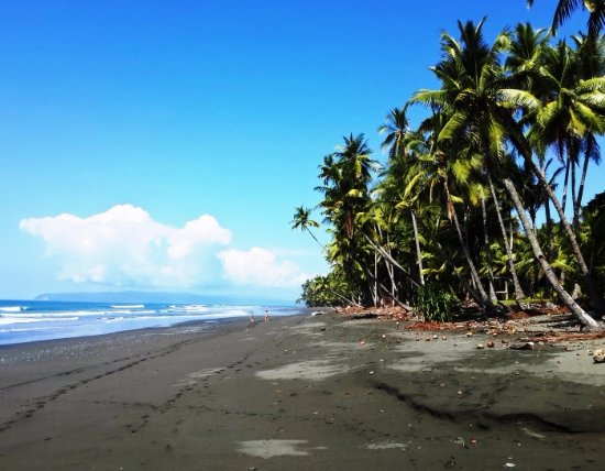 Santa Ana, Costa Rica: Pavones Beach in the South Pacific of Costa Rica
