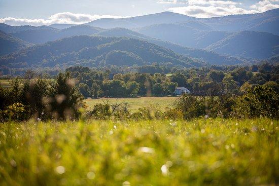 Landscape - Picture of The Inn at Mount Vernon Farm, Sperryville - Tripadvisor