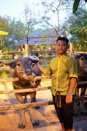 """Phuket (miasto), Tajlandia: В """"тайской деревне"""" - 01"""