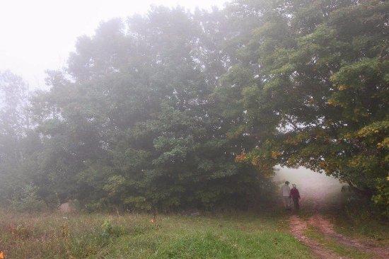 Bayfield, WI: Foggy morning!