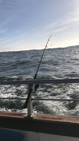 Captain s reel deep sea fishing newport or anmeldelser for Deep sea fishing newport