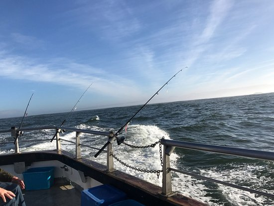 Captain s reel deep sea fishing newport all you need for Charter fishing newport oregon