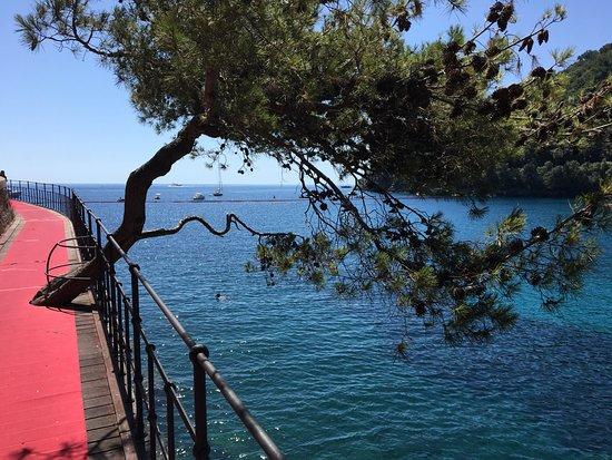 Paraggi, Italy: beautiful