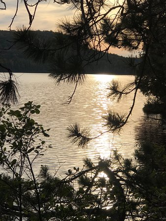 Algonquin Provincial Park, Canada: Campsite on Proulx Lake, Algonquin Park.